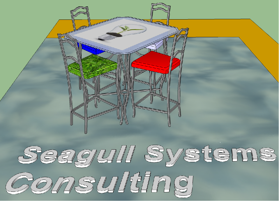 Seagull Systems - Consulting